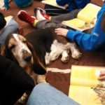 A Special Therapy Dog Story from Pennsbury
